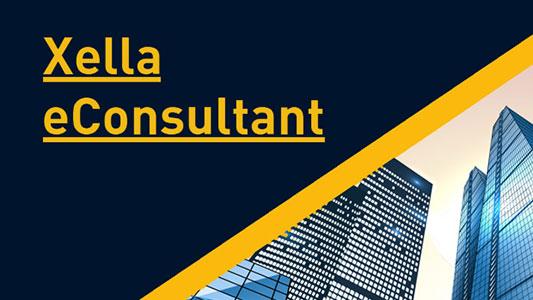 consultant-vest